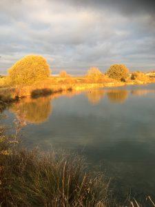 Lakeside Evening Sun